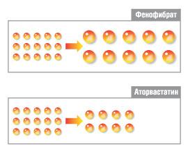 Рис.4. Изменения частичек ЛПНП при приеме аторвастатина преимущественно количественные, а фенофибрата — качественные