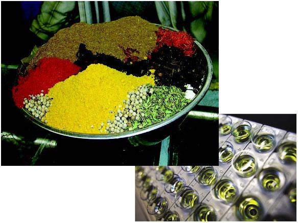 Традиционные лекарства вплену у биофлибустьеров