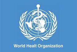 ВОЗ считает возможным объявить 6-й уровень угрозы пандемии гриппа H1N1