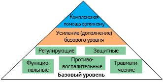 Систематизация топ-группы препаратов Heel