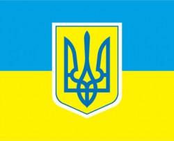 Президент призначив заступників Голови Державної служби України з лікарських препаратів і контролю за наркотиками