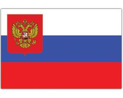 Оптимизм роста иперспективы компании «Фармсинтез» нафармрынке России иСША