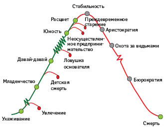 Жизненный цикл организации икультура управления