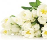 МИР, ТРУД, МАЙ, ЮБИЛЕЙ! 1 мая Юрий Викторович Руденко, директор Представительства «EU Pharmacia» вУкраине, отмечает юбилей!