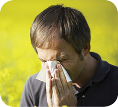 Кларитин® vs. аллергия: 20 лет успешной борьбы вУкраине