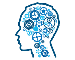 Что такое когнитивная гибкость и почему она важна?