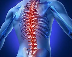 Ученые достигли большого успеха в лечении паралича спинного мозга