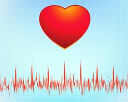 Какие тренировки вредны для сердца?