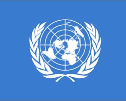 Окружающая среда превращается в резервуар противомикробных веществ — ООН