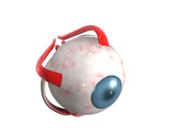 5 советов для здоровья глаз