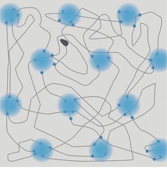 Схематическое изображение координационных нейронов