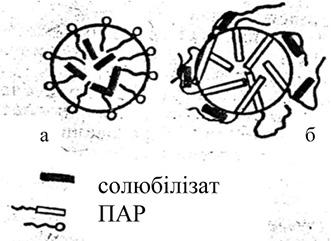 Можливі сферичні міцели ПАР і типи включення солюбілізату