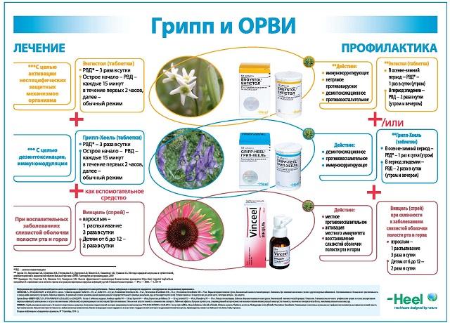 бастерфорт лекарство от паразитов