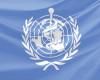 Закупівлі фармпродукції через міжнародні організації: набув чинності відповідний закон