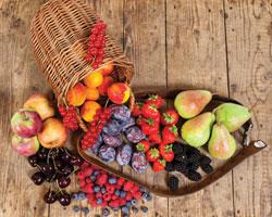 Низкожировая диета оказалась неэффективной вдолгосрочной перспективе