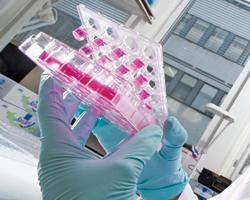 Crown Agents запрошує фармринок взяти участь узакупівлях лабораторних реактивів