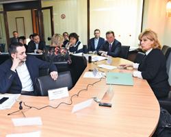 Авторы законопроектов «Олекарственных средствах» должны определиться, какой изних будет взят заоснову: Ольга Богомолец