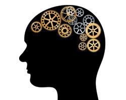 Похудение влияет на деятельность мозга?