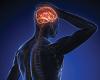 Соблюдение диеты, богатой клетчаткой, значительно снижает риск возникновения инсульта
