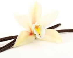Выявлены новые полезные свойства ванили