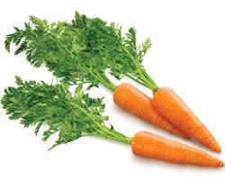 Ученые выявили новые полезные свойства моркови