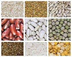 Магний врационе питания: какова польза для здоровья?