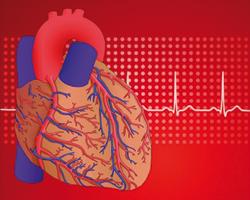 Как распознать инфаркт миокарда: распространенные симптомы