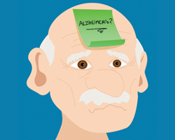 Какие факторы повышают риск развития болезни Альцгеймера?