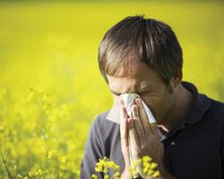 Как справиться ссезонной аллергией: советы специалистов