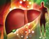 Чем больше седых волос умужчины, тем выше риск заболеваний сердца