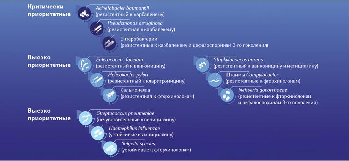 Приоритетные патогены (ВОЗ)