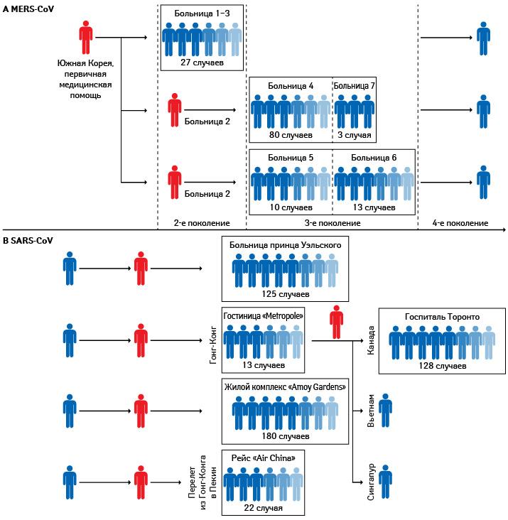 Упрощенные схемы распространения инфекции MERS-CoV (А) иSARS-CoV (В); «суперраспространители»— красным (Wong G. etal., 2015)